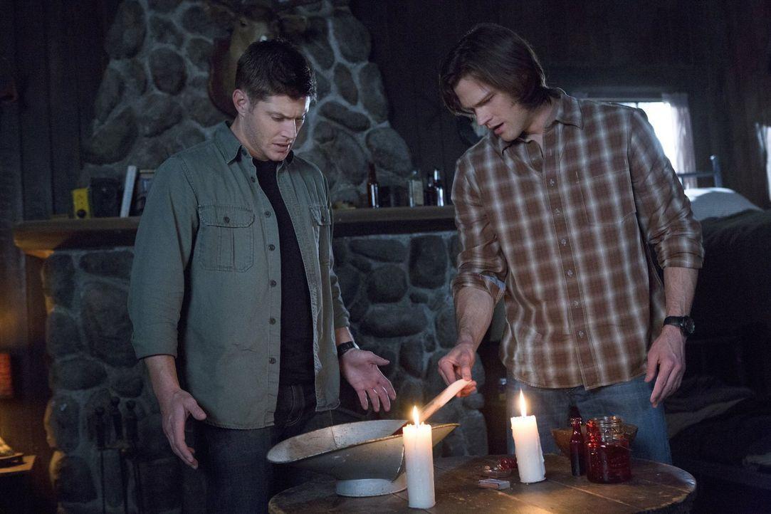 Können Sam (Jared Padalecki, r.) und sein Bruder Dean (Jensen Ackles, l.) mit ihren übernatürlichen Kräften Vampire aufspüren und diese besiegen? Od... - Bildquelle: Warner Bros. Television
