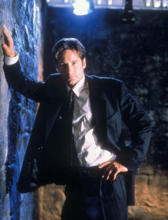 (5. Staffel) - Die X-Akten: Hier werden Fälle gesammelt, in denen ungewöhnliche Phänomene eine Rolle spielen, die nicht erklärt werden können. FBI-A... - Bildquelle: TM +   2000 Twentieth Century Fox Film Corporation. All Rights Reserved.