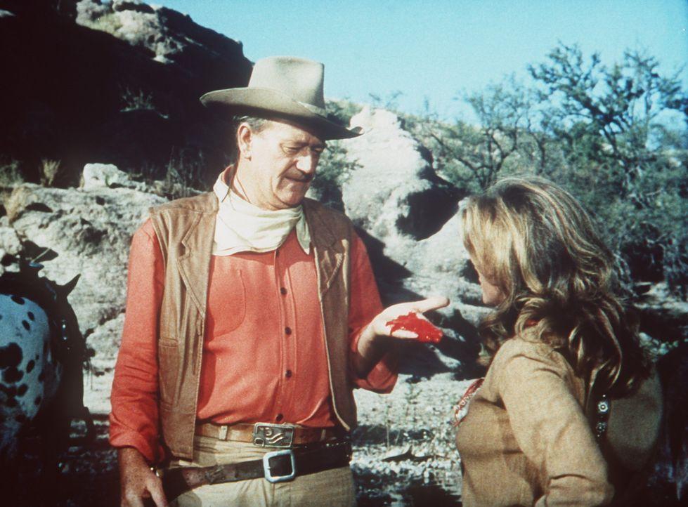 Durch ein tragisches Missgeschick tötet Thornton (John Wayne, l.) den jungen Luke MacDonald, den Bruder der hübschen Joey (Michele Carey, r.) ... - Bildquelle: Paramount Pictures