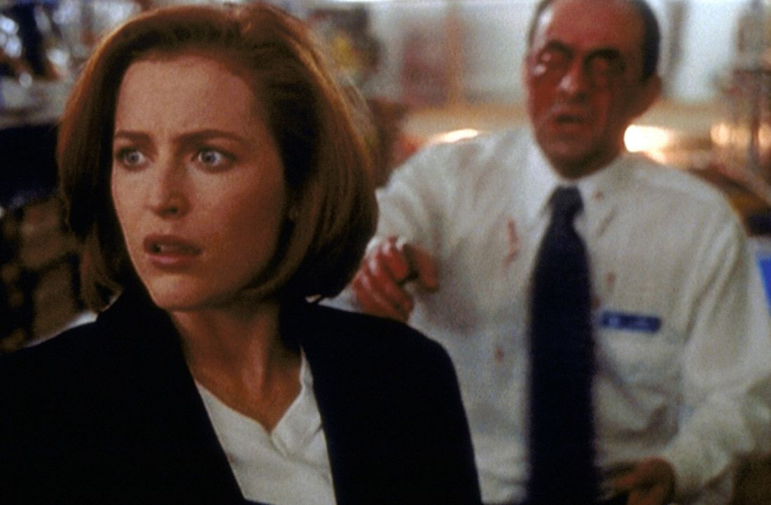 Scully (Gillian Anderson, l.) ist über die blutige Szene in einem Supermarkt völlig entsetzt. Auch der Manager (Gordon Tipple, r.) hat sich selbst b... - Bildquelle: TM +   2000 Twentieth Century Fox Film Corporation. All Rights Reserved.
