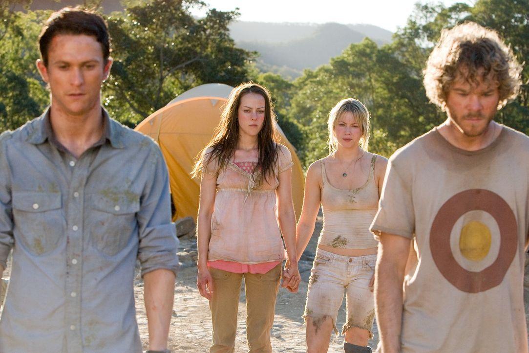 Die erste Begeisterung über den spontanen Urwaldtrip ist bei (v.l.n.r.) Jeff (Jonathan Tucker,), Amy (Jena Malone), Stacy (Laura Ramsey) und Eric (S... - Bildquelle: 2008 DreamWorks LLC. All Rights Reserved.l
