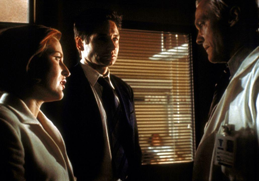 Mulder (David Duchovny, M.) und Scully (Gillian Anderson, l.) befragen Dr. Robert Wieder (James Morrison, r.) zu dem mysteriösen Tod seines Schwiege... - Bildquelle: TM +   2000 Twentieth Century Fox Film Corporation. All Rights Reserved.