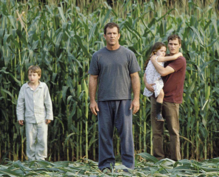 Fassungslos stehen (v.l.n.r.) Morgan (Rory Culkin), Graham (Mel Gibson), Bo (Abigail Breslin) und Merrill (Joaquin Phoenix) vor den rätselhaften Kor... - Bildquelle: Touchstone Pictures
