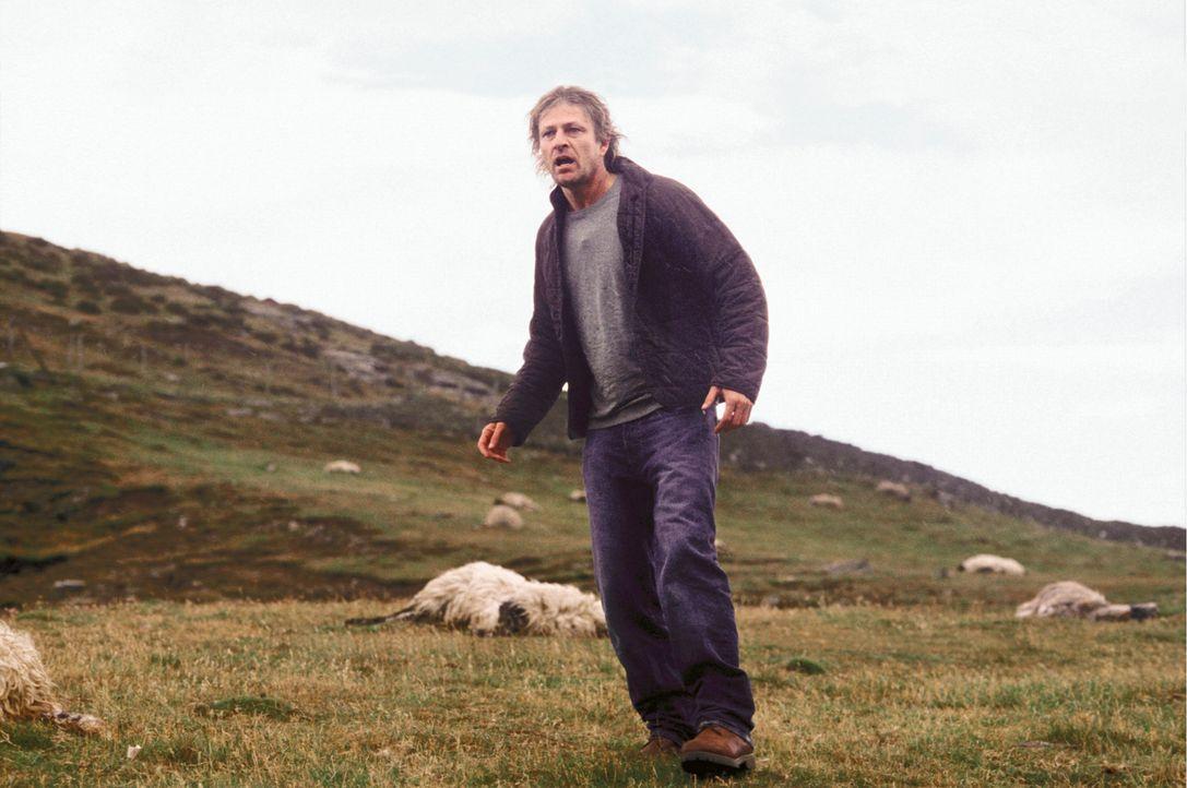Zuerst verschwindet seine Tochter spurlos und dann mutieren die harmlosen Schafe zu wilden Horrorbestien: James (Sean Bean) ... - Bildquelle: Constantin Film