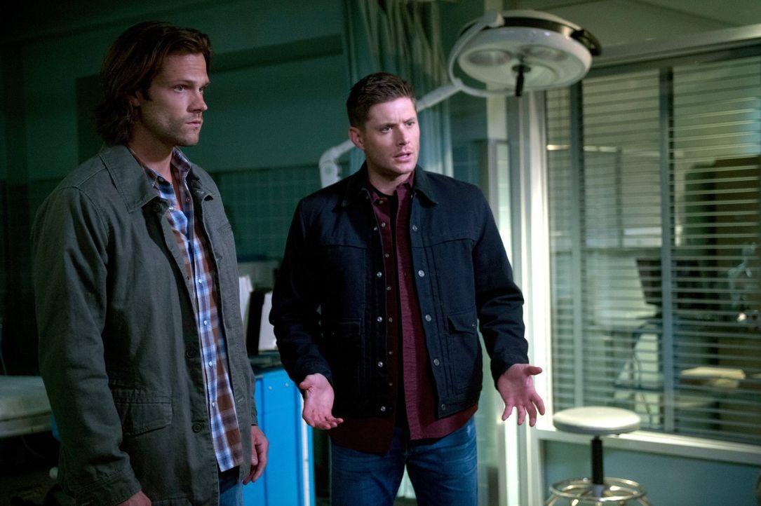 Die Finsternis zeigt ihre ersten grausamen Seiten, woraufhin Sam (Jared Padalecki, l.) und Dean (Jensen Ackles, r.) die Jagd aufnehmen ... - Bildquelle: 2014 Warner Brothers