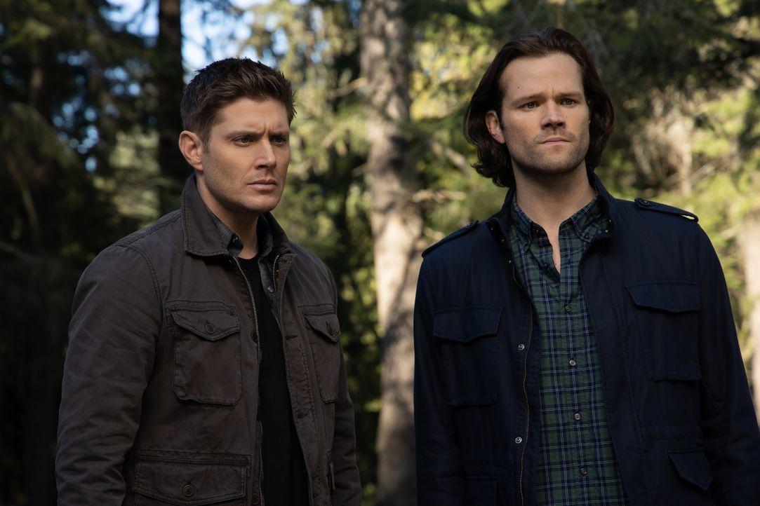 Dean Winchester (Jensen Ackles, l.); Sam Winchester (Jared Padalecki, r.) - Bildquelle: LEONINE Studios