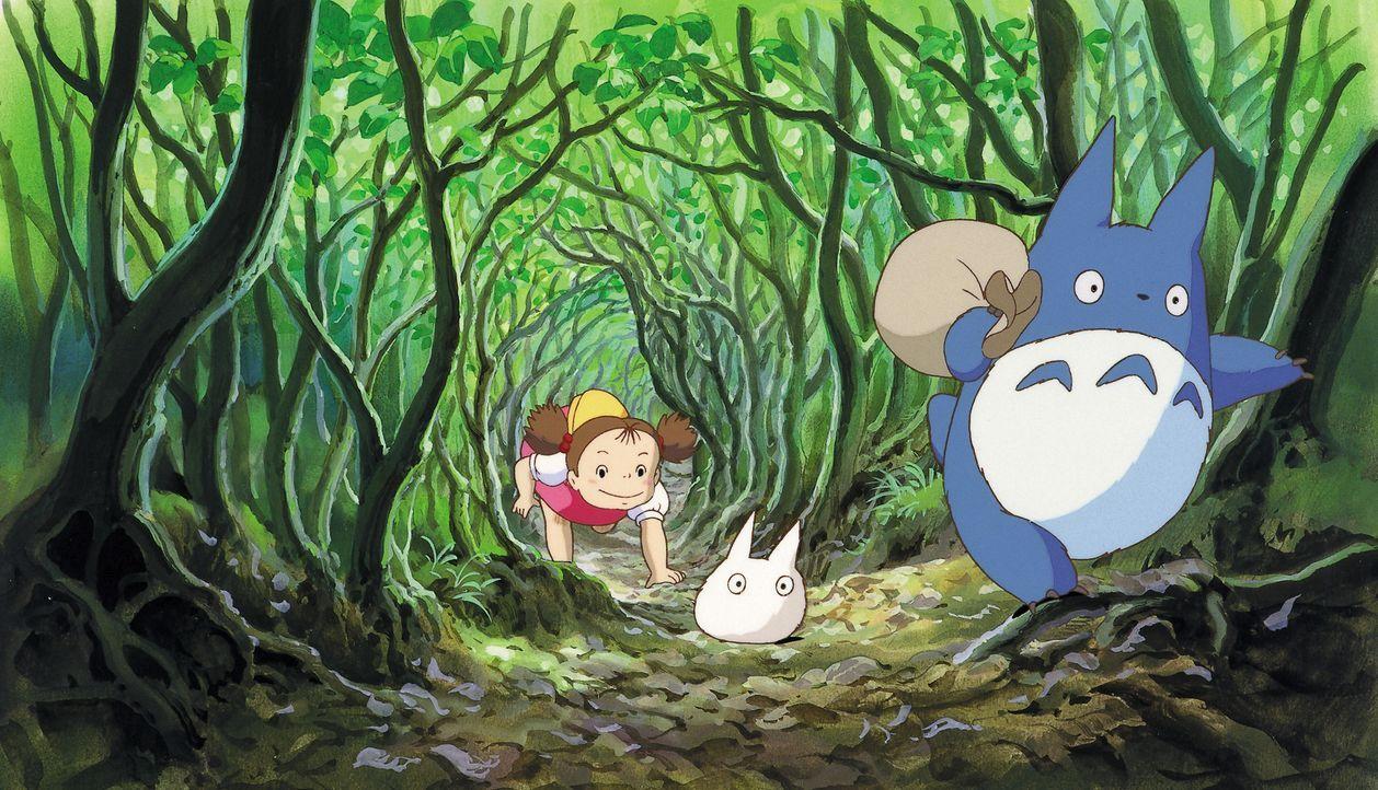 Mei Kusakabe (l.); Totoros (M. und r.) - Bildquelle: Wild Bunch Germany