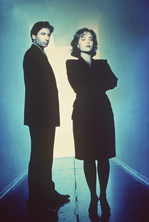 (1. Staffel) - Mit der Aufklärung ungewöhnlicher Ereignisse, den so genannten X-Akten, sind die FBI-Agenten Fox Mulder (David Duchovny, l.) und Da... - Bildquelle: TM +   Twentieth Century Fox Film Corporation. All Rights Reserved.