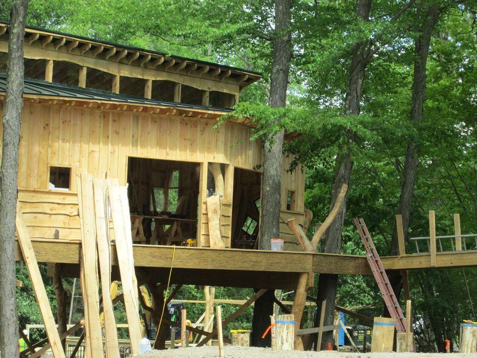 Diesmal ist jede Menge Kreativität gefragt. Ein Museum für Kinder in Massachusetts beauftragt die Treehouse Guys ein Baumhaus zu bauen, in dem sich... - Bildquelle: 2016,DIY Network/Scripps Networks, LLC. All Rights Reserved