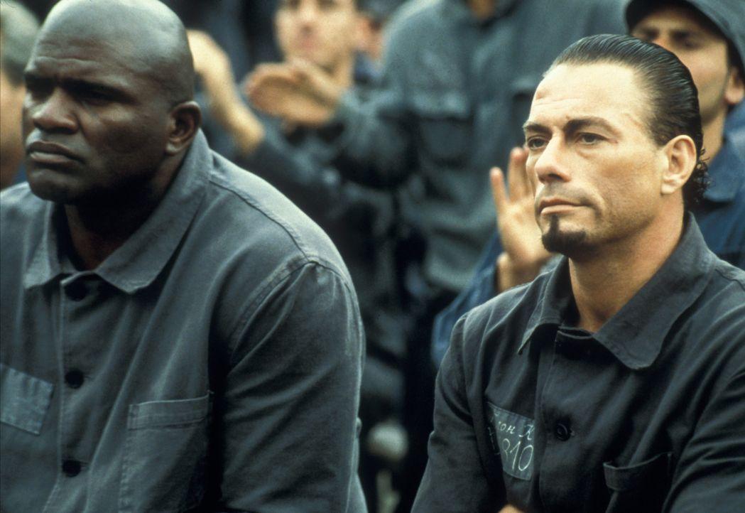 Nach und nach steigt Kyle (Jean-Claude Van Damme, r.) zum Star der Lagerkämpfe auf, bis ihm klar wird, dass er nur eine Marionette der grausamen Ver... - Bildquelle: NU IMAGE