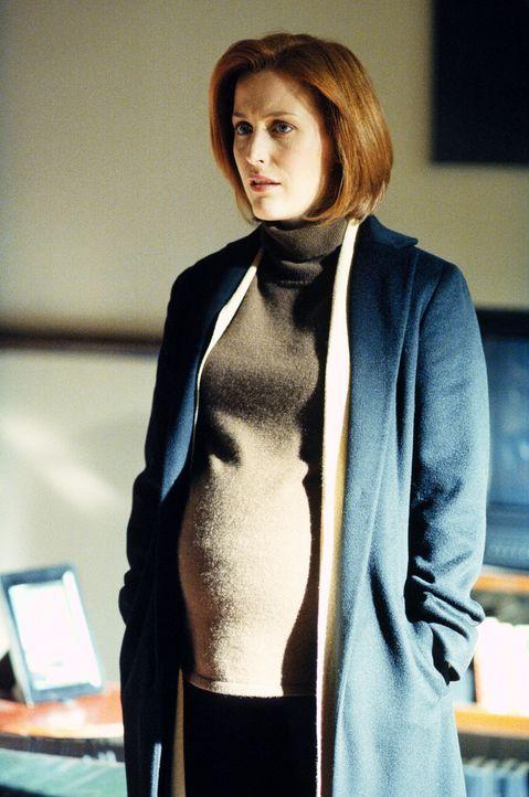 Die hochschwangerer Scully (Gillian Anderson) kann ihrem Kollegen Mulder nicht dabei helfen, die Bevölkerungsdaten heimlich unter die Lupe zu nehmen. - Bildquelle: TM +   2000 Twentieth Century Fox Film Corporation. All Rights Reserved.