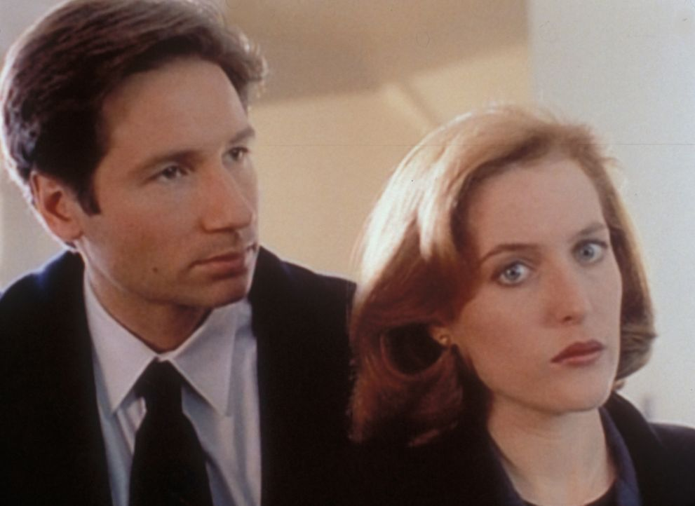 Mulder (David Duchovny, l.) und Scully (Gillian Anderson, r.) sind sich nicht einig, wie die Warnung vor den Mächten der Finsternis zu verstehen ist. - Bildquelle: TM +   2000 Twentieth Century Fox Film Corporation. All Rights Reserved.