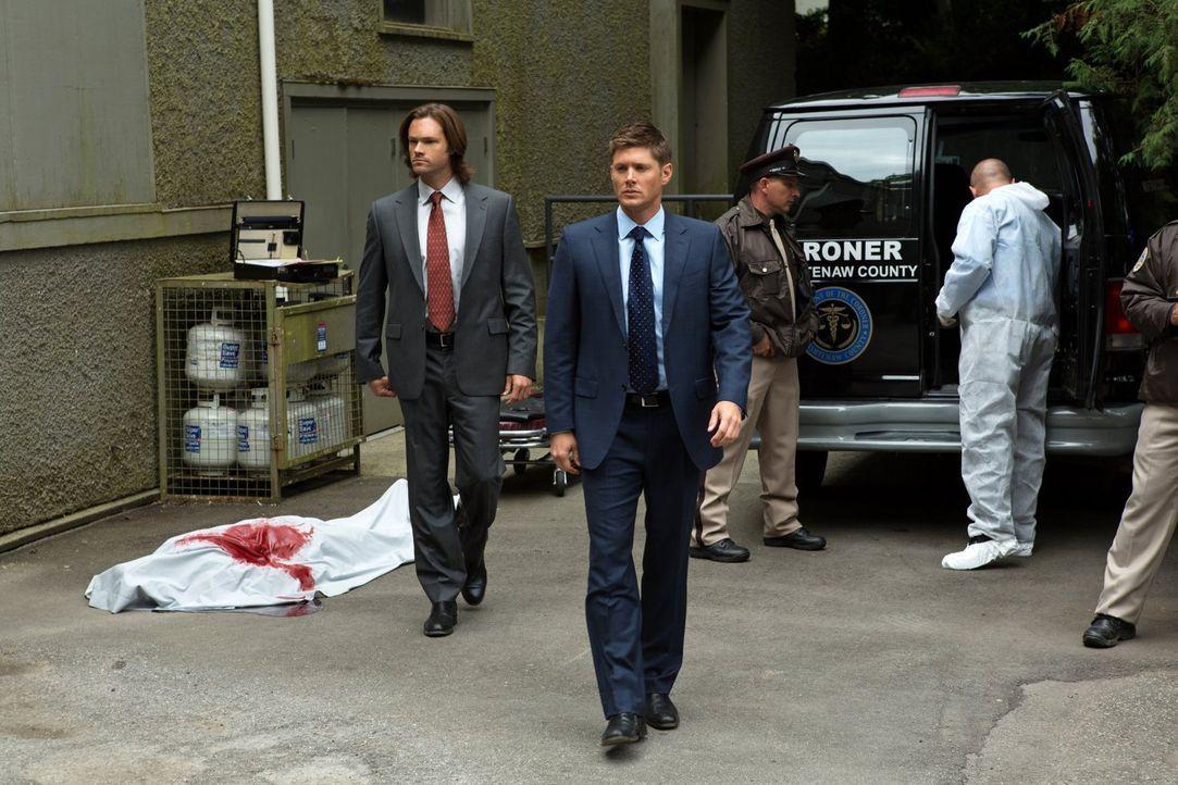 Als ein Mensch durch einen Biss getötet wird, suchen Sam (Jared Padalecki, l.) und Dean (Jensen Ackles, 2.v.r.) nach dem Grund für den mysteriösen T... - Bildquelle: Warner Bros. Television