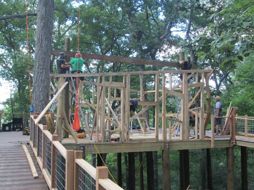 Im Michigan bauen die Treehouse Guys ein ganz besonderes Baumhaus für kranke Kinder, die das Camp North Star Reach besuchen ... - Bildquelle: 2016,DIY Network/Scripps Networks, LLC. All Rights Reserved