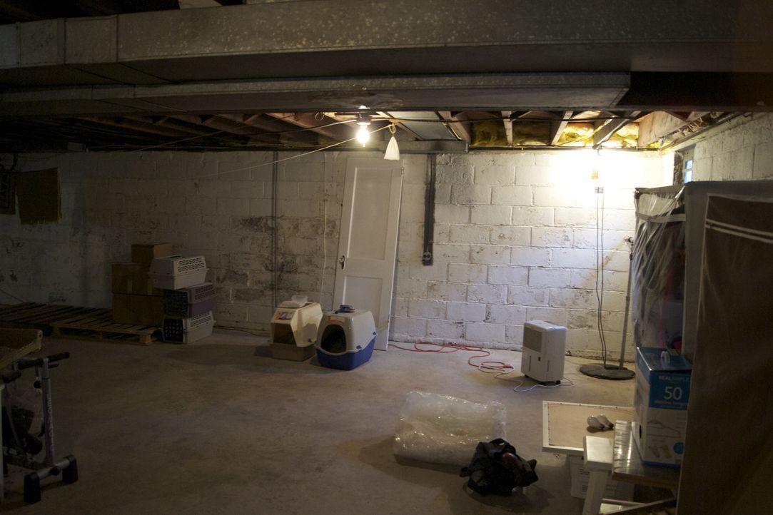 Aus diesem Keller-Raum soll ein Keller Deluxe werden. Auf Josh Temple und sein Team wartet viel Arbeit ... - Bildquelle: 2011, DIY Network/Scripps Networks, LLC.  All Rights Reserved