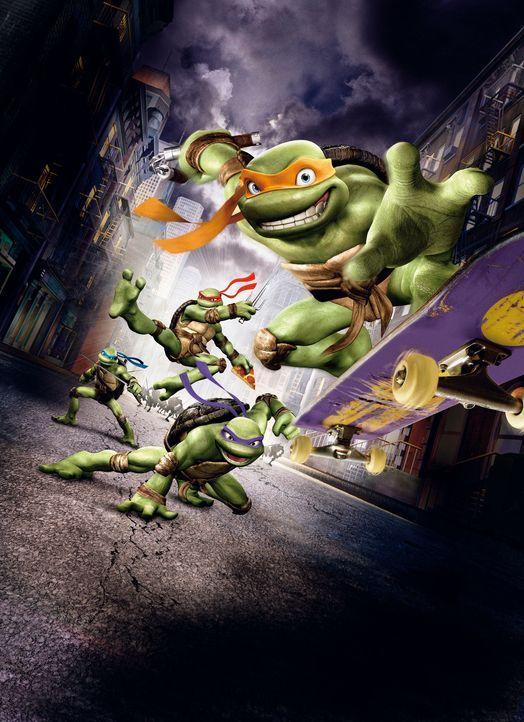 Vier ganz besondere Schildkröten leben in der New Yorker Kanalisation. Leonardo (h. l.), Donatello (3. v. l.), Raphael (2. v. l.) und Michelangelo (... - Bildquelle: TOBIS Filmkunst GmbH