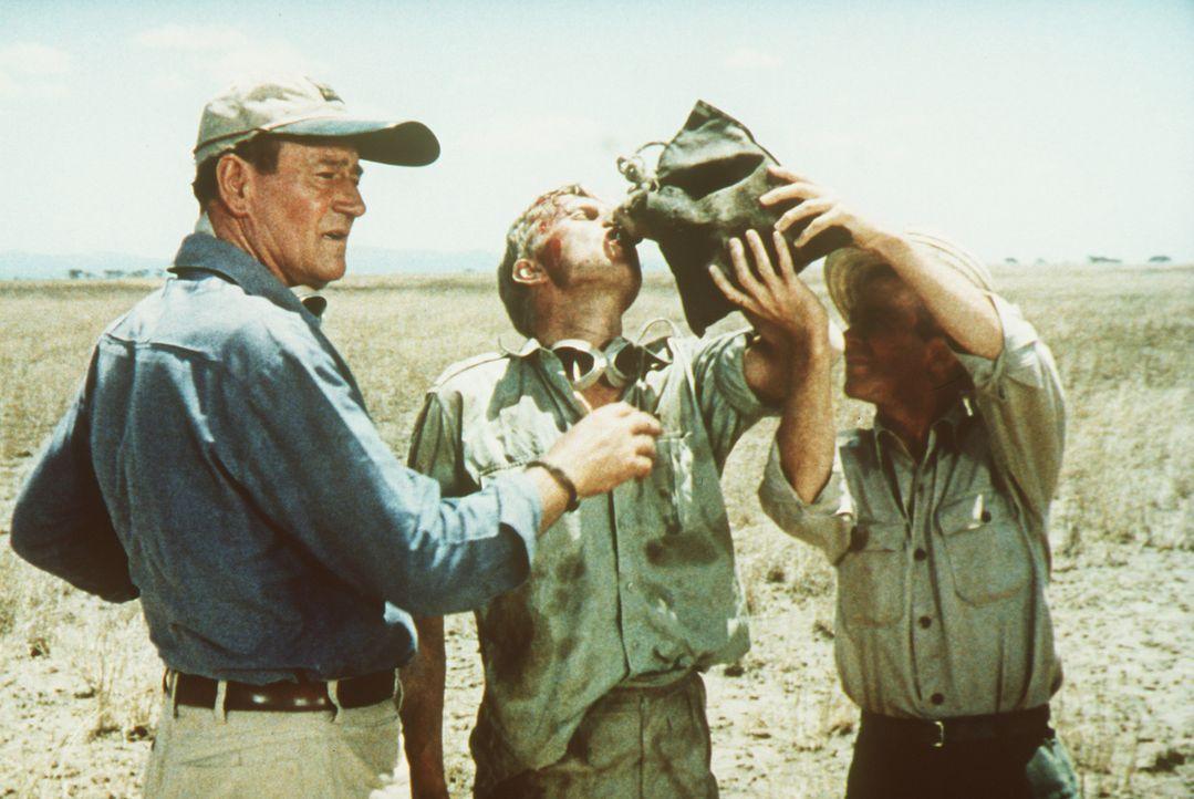 Jagen macht durstig: Sean Mercer (John Wayne, l.), Kurt Stahl (Hardy Krüger, M.) und Pockets (Red Buttons, r.) gönnen sich eine Pause von ihrem anst... - Bildquelle: Paramount Pictures