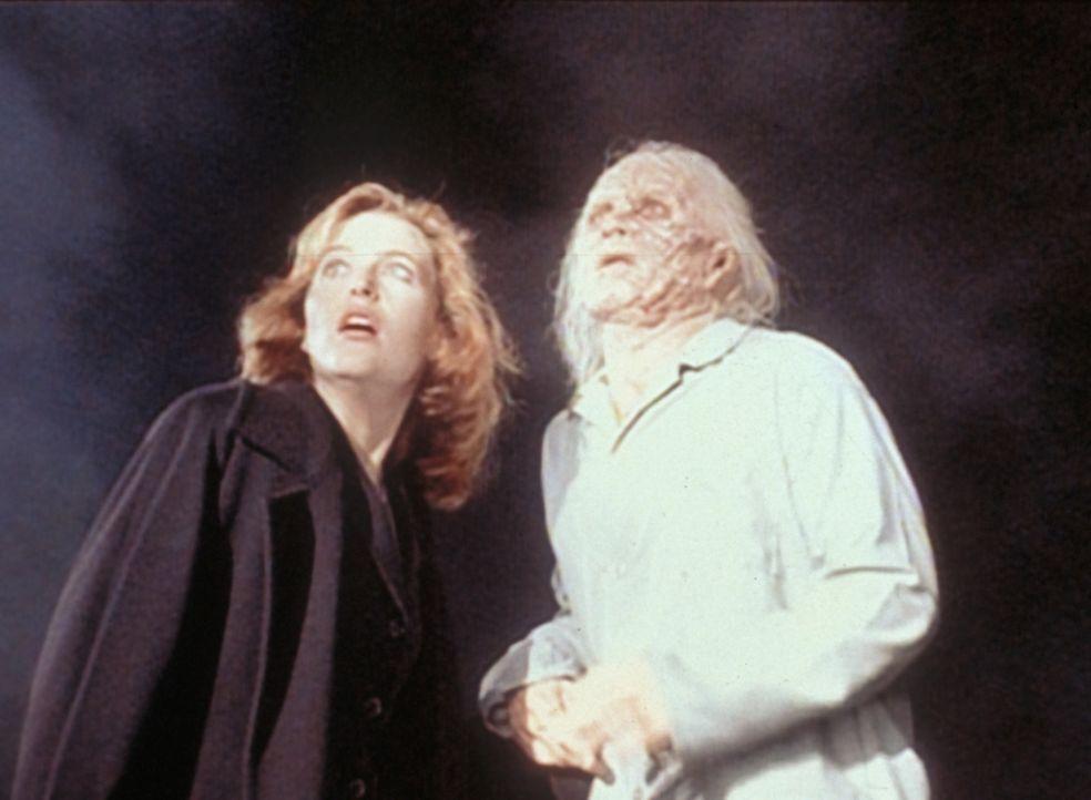 Scully (Gillian Anderson) erfährt von einem geheimnisvollen Unbekannten, dass grausame Menschenversuche in einer ehemaligen Lepra-Kolonie durchgefüh... - Bildquelle: TM +   2000 Twentieth Century Fox Film Corporation. All Rights Reserved.