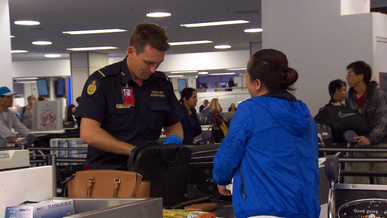 Die Grenzschützer prüfen eine Fracht in Sydney. Der Inhalt ist brisant: ille... - Bildquelle: Seven Productions 2018
