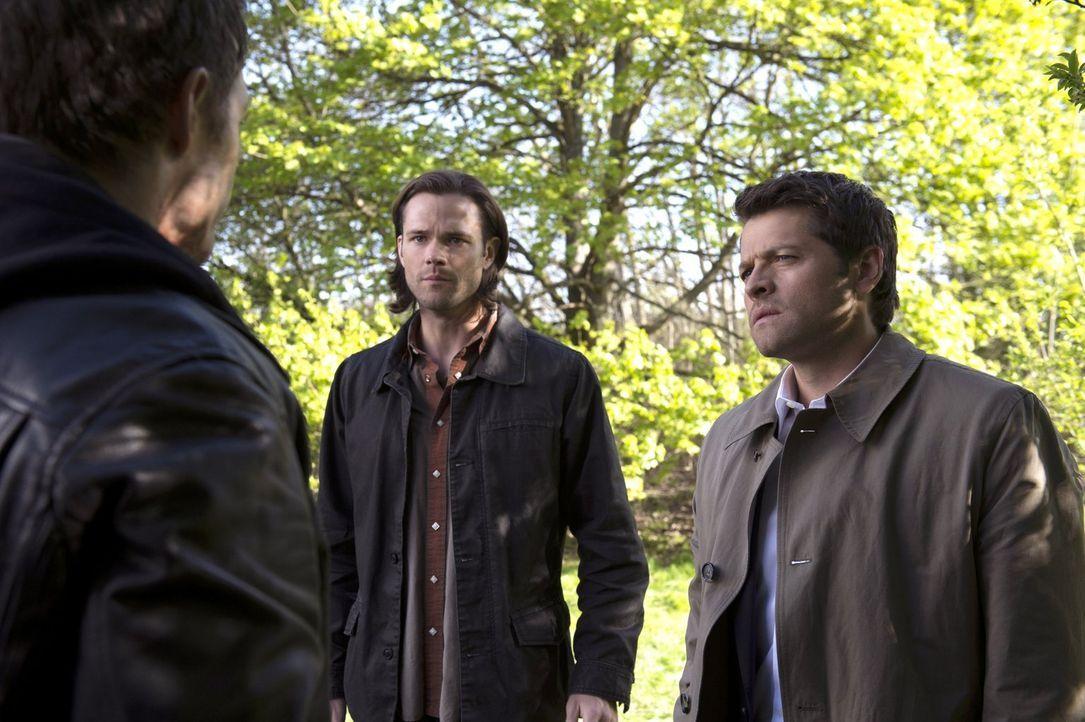 Während Castiel (Misha Collins, r.) und Sam (Jared Padalecki, l.) noch versuchen, mit Hilfe eines Verbündeten gegen Metatron vorzugehen, setzt diese... - Bildquelle: 2013 Warner Brothers