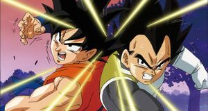 Vegeta und Son Goku (Dragon Ball)
