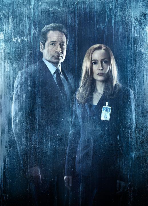 (11. Staffel) - Wem können Mulder (David Duchovny, l.) und Scully (Gillian Anderson, r.) überhaupt noch vertrauen? - Bildquelle: 2018 Fox and its related entities.  All rights reserved.
