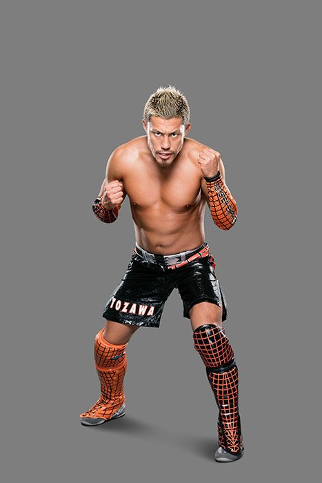 Akira_11302016_035_and_073 - Bildquelle: 2016 WWE, Inc. All Rights Reserved.