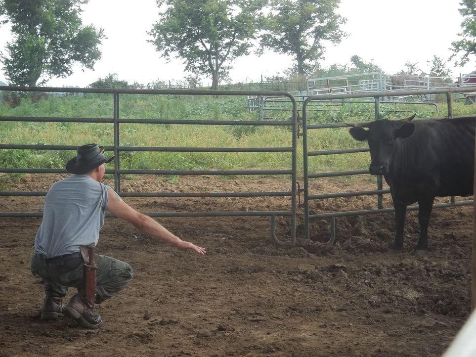 Immer, wenn die Menschen in Kentucky ein Problem mit Tieren haben, rufen sie ihn: den Schildkröten-Mann ... - Bildquelle: Discovery Communications