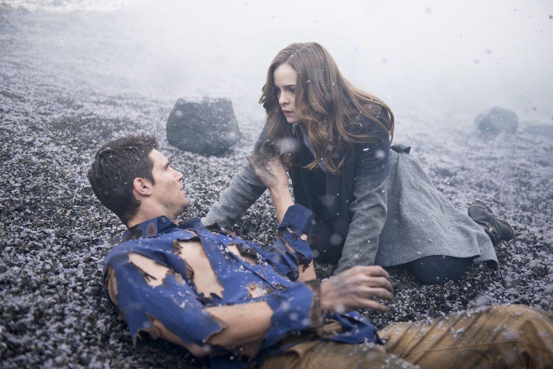 Noch ahnen Ronnie (Robbie Amell, l.) und Caitlin (Danielle Panabaker, r.) nicht, dass eben nicht alles perfekt ist ... - Bildquelle: Warner Brothers.