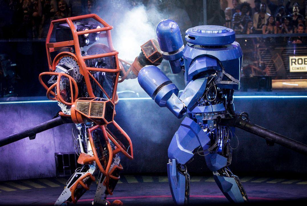 In der Robot Combat League messen sich die Könige der mechanischen Kampf-Kunst. Welches Team wird alle drei Runden in der Arena am besten überstehen... - Bildquelle: Nicole Wilder 2012 Syfy Media LLC