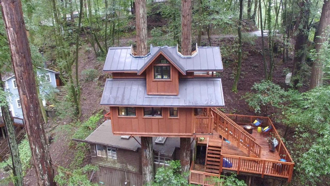 Auf die Bäume fertig los: Für die Treehouse Guys geht es in Guerneville mal wieder hoch hinaus, denn eine vierköpfige Familie wünscht sich einen Erh... - Bildquelle: 2016,DIY Network/Scripps Networks, LLC. All Rights Reserved.