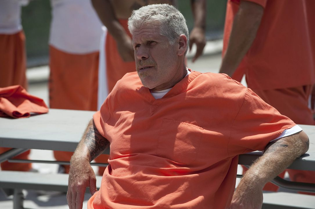 "Während sich Clay (Ron Perlman) im Knast nach ""Schutz"" umsieht, versucht Gemma draußen, die enorm hohe Kautionssumme zu besorgen. - Bildquelle: 2009 Twentieth Century Fox Film Corporation and Bluebush Productions, LLC. All rights reserved."