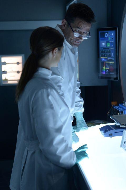 Sarah (Jordan Hayes, l.) muss sich eingestehen, dass Julias Blut keine Hinweise auf Antikörper oder eine andere Abwehrreaktion auf den Virus aufweis... - Bildquelle: 2014 Sony Pictures Television Inc. All Rights Reserved.