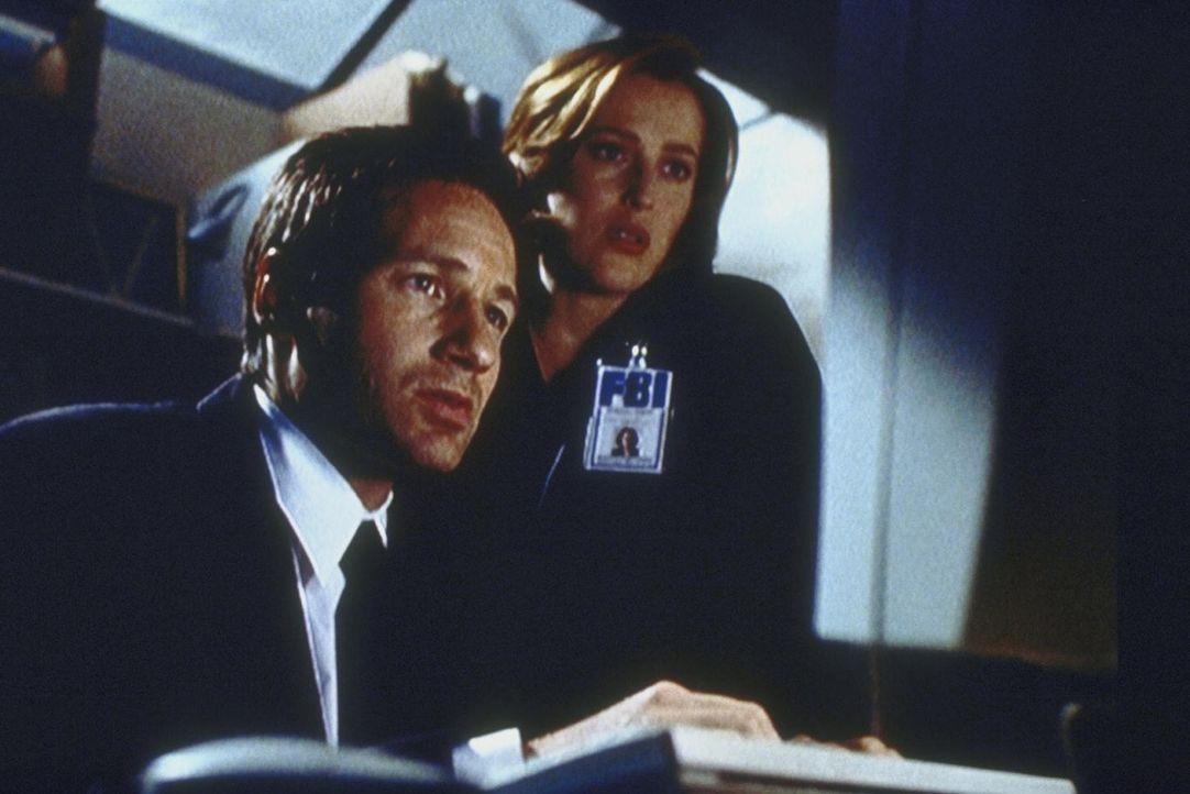 Mulder (David Duchovny, l.) und Scully (Gillian Anderson, r.) finden bei ihrer Recherche etwas Unglaubliches heraus ... - Bildquelle: TM +   2000 Twentieth Century Fox Film Corporation. All Rights Reserved.