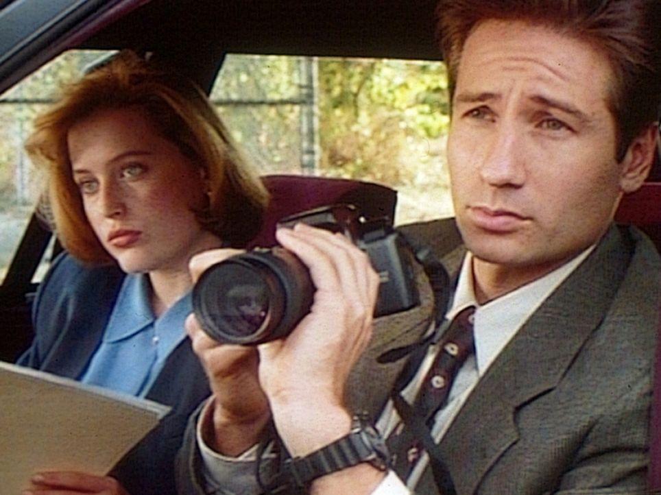 Die FBI-Agenten Fox Mulder (David Duchovny, r.) und Dana Scully (Gillian Anderson, l.) versuchen, einen Geist zu fotografieren. - Bildquelle: TM +   Twentieth Century Fox Film Corporation. All Rights Reserved.