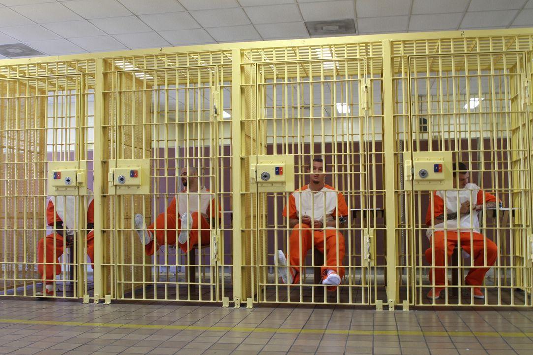 Die Neuankömmlinge warten auf ihre Einteilung in die einzelnen Zellenblocks und Level ... - Bildquelle: Nora Ballard 2010 NGC Network US, LLC All Rights Reserved