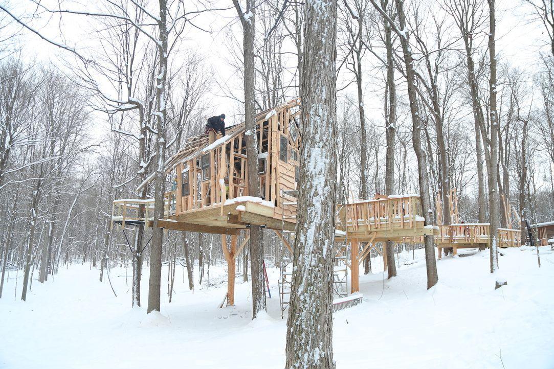 """Das neue Projekt der Treehouse Guys: Der """"Sunshine Campus"""", ein Feriencamp für behinderte Kinder, soll sein eigenes Baumhaus bekommen. - Bildquelle: 2015, DIY Network/Scripps Networks, LLC. All Rights Reserved."""