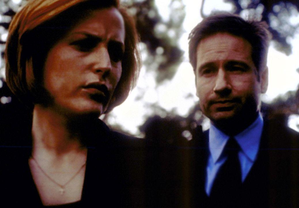 Scully (Gillian Anderson, l.) und Mulder (David Duchovny, r.) suchen nach einem Gefängnisgeistlichen, der einem Mörder zur Flucht verholfen hat. - Bildquelle: TM +   2000 Twentieth Century Fox Film Corporation. All Rights Reserved.