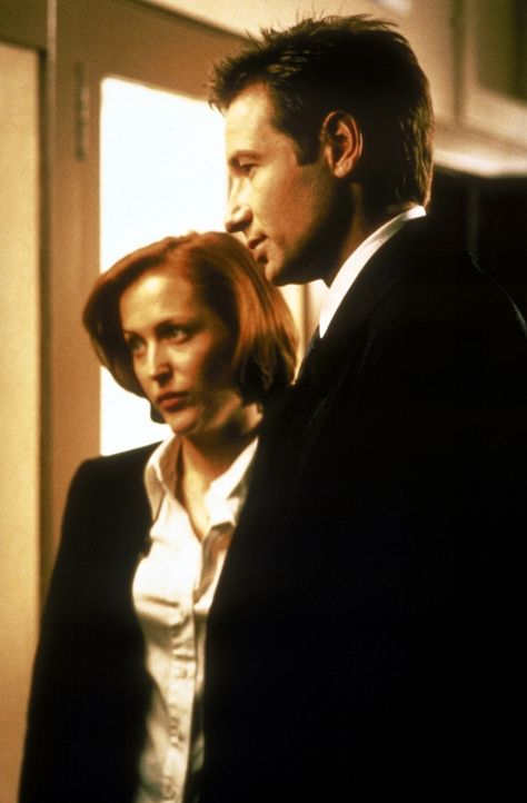 Scully (Gillian Anderson, l.) und Mulder (David Duchovny, r.) fragen sich, ob der Verdächtige die Kraft zu diesem Mord hatte. - Bildquelle: TM +   2000 Twentieth Century Fox Film Corporation. All Rights Reserved.