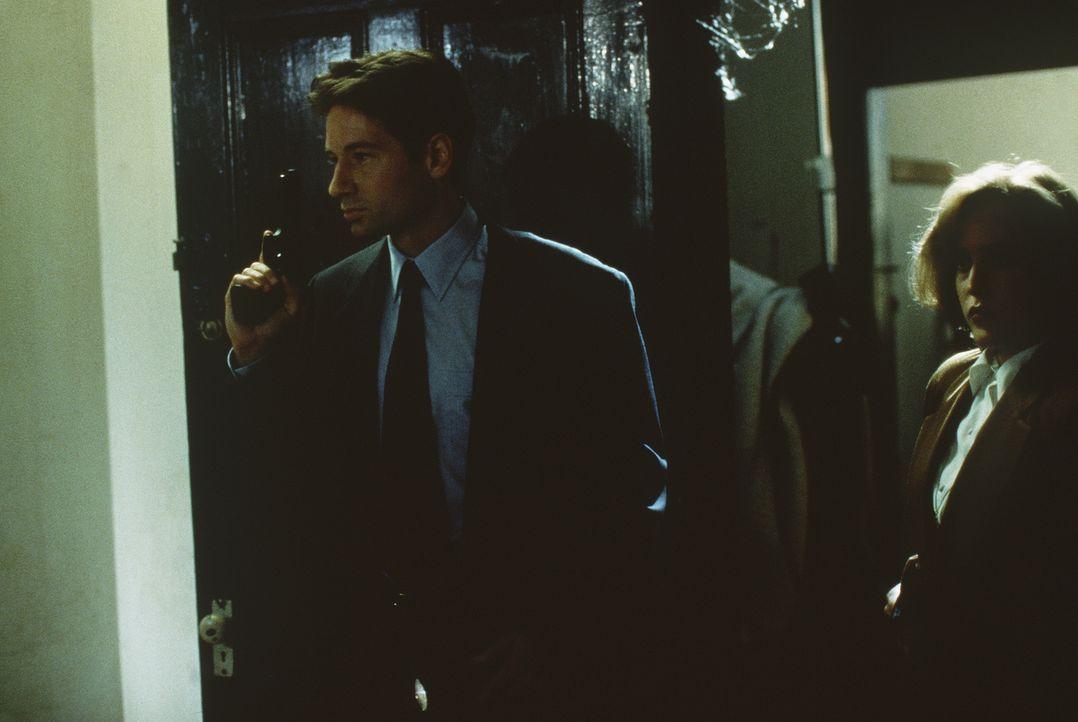 Die FBI-Agenten Dana Scully (Gillian Anderson, r.) und Fox Mulder (David Duchovny, l.) sind auf der Spur eines geheimnisvollen Mörders, der seinen O... - Bildquelle: TM +   Twentieth Century Fox Film Corporation. All Rights Reserved.