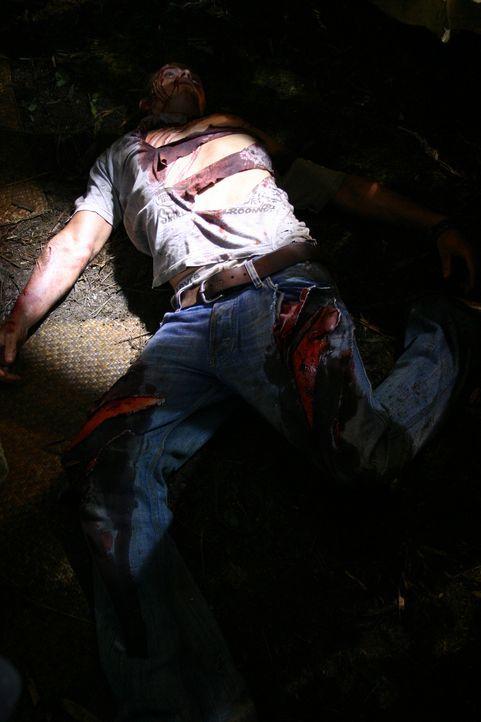 Das Ende eines Landausflugs: Jake (Kellan Lutz) ... - Bildquelle: Voltage Pictures