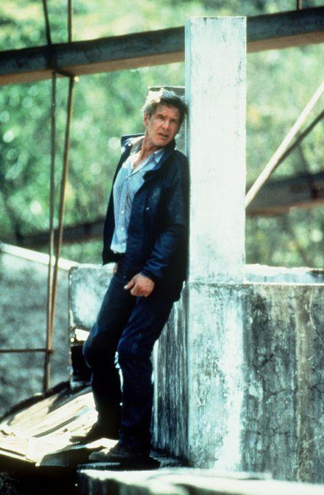 Das Drogenkartell ahnt nicht, dass der CIA-Agent Ryan (Harrison Ford) dem Anschlag in Bogota  entfliehen konnte ... - Bildquelle: Paramount Pictures