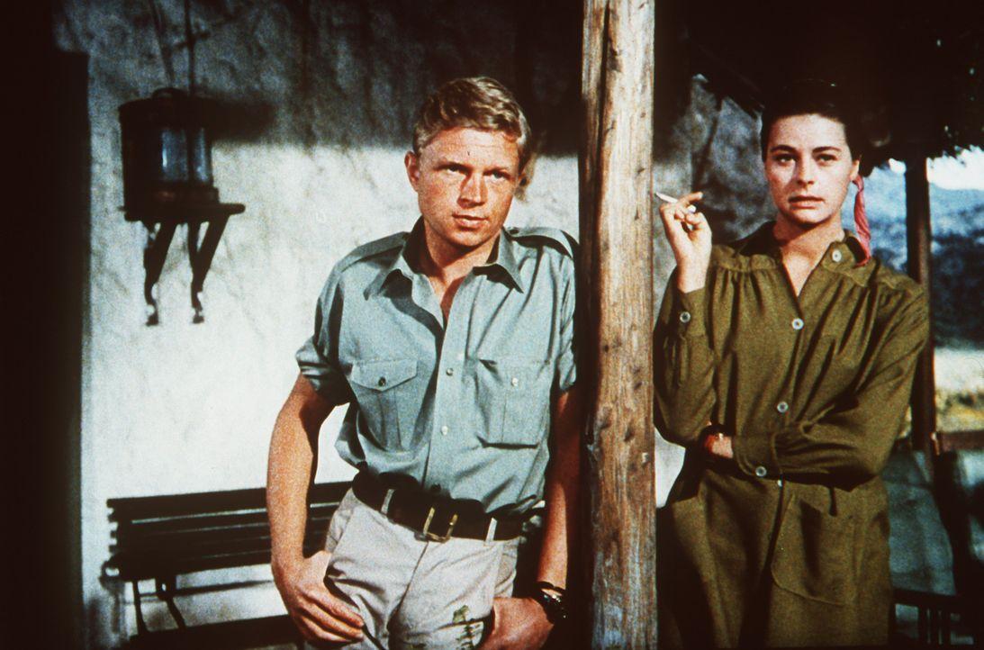 Kurt Stahl (Hardy Krüger, l.) hätte nichts dagegen, mit Brandy (Michèle Girardon, r.) mehr als nur ein Angestelltenverhältnis zu haben ... - Bildquelle: Paramount Pictures