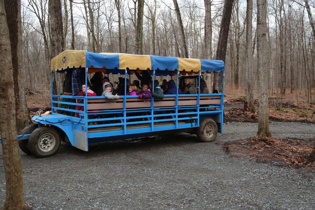 """Können die Treehouse Guys den Baumhaus-Traum der Kinder des """"Sunshine Campus"""" (Foto) im Norden von New York erfüllen? Die Kinder wünschen sich einen... - Bildquelle: 2015, DIY Network/Scripps Networks, LLC. All Rights Reserved."""