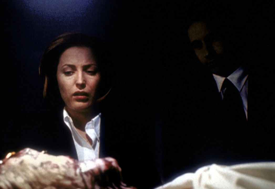 Entsetzt stehen Scully (Gillian Anderson, l.) und Mulder (David Duchovny, r.) vor der Leiche eines Deputy. - Bildquelle: TM +   2000 Twentieth Century Fox Film Corporation. All Rights Reserved.