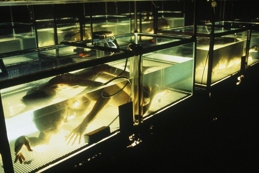 In einem scheußlichen Versuchslabor werden menschliche Körper, die unter Wasser atmen können, in Bassins gehalten ... - Bildquelle: TM +   Twentieth Century Fox Film Corporation. All Rights Reserved.