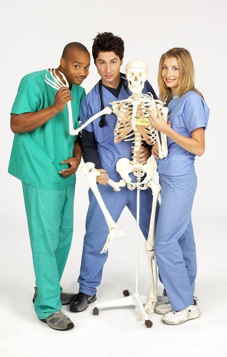 (1. Staffel) - Das erste Jahr als Assistenzärzte am Sacred Heart Hospital fordert von den drei Neulingen, John Dorian (Zach Braff, M.), Turk (Donald... - Bildquelle: Touchstone Television