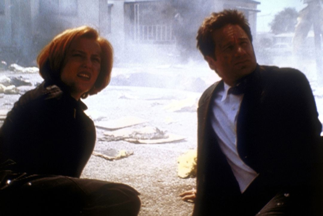 Scully (Gillian Anderson, l.) und Mulder (David Duchovny, r.) sind bei der Explosion eines Wohnwagens mit dem Leben davongekommen. - Bildquelle: TM +   2000 Twentieth Century Fox Film Corporation. All Rights Reserved.