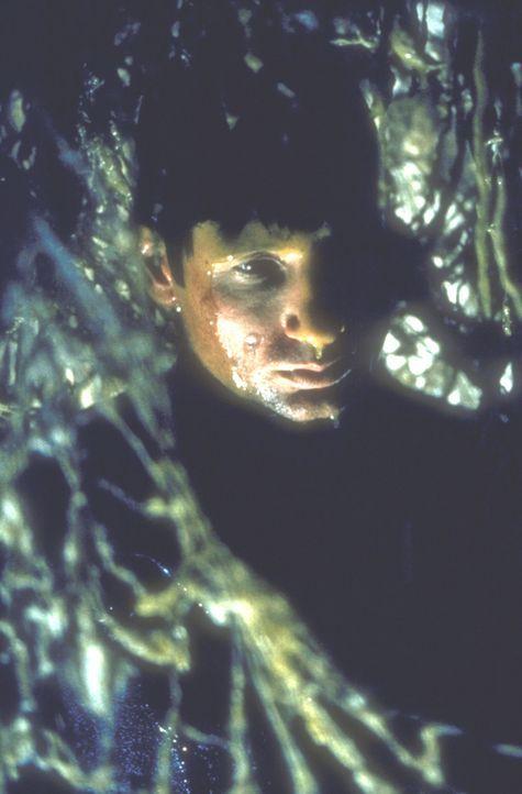 Mulder (David Duchovny) entdeckt am Fundort zweier Skelette einen mysteriösen grünlichen Schleim. - Bildquelle: TM +   2000 Twentieth Century Fox Film Corporation. All Rights Reserved.