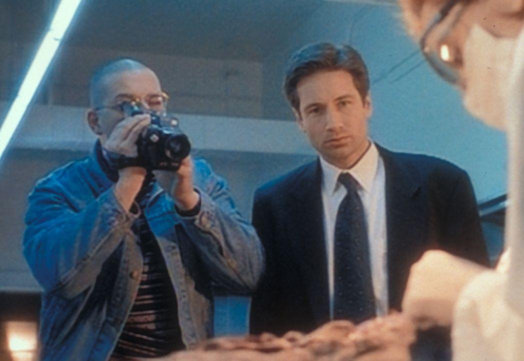 Blaine Faulkner (Allan Zinyk, l.) hat die Leiche eines Außerirdischen gefunden und erhält von Scully (Gillian Anderson, r.) und Mulder (David Duchov... - Bildquelle: TM +   Twentieth Century Fox Film Corporation. All Rights Reserved.